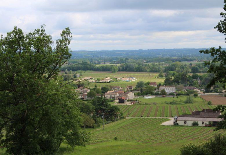 Boucle de Pineuilh / Saint-Philippe-du-Seignal