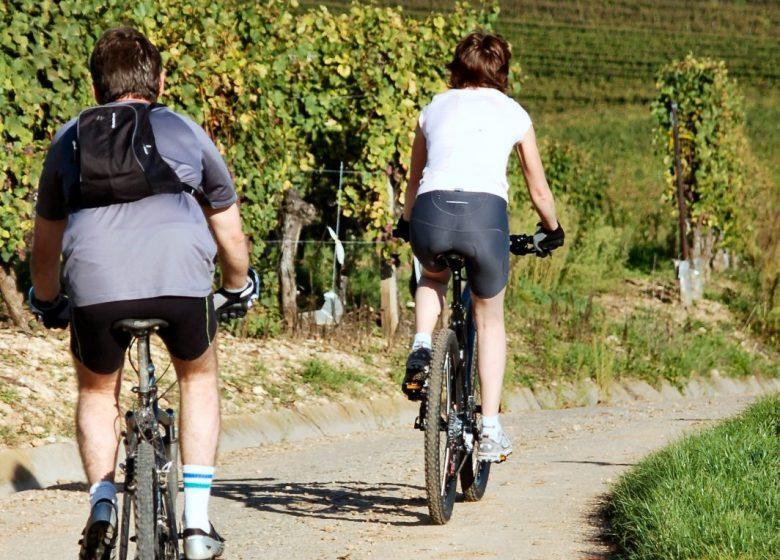 Location de vélos à assistance électrique
